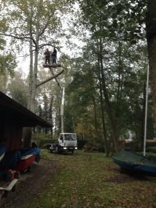2014.10.25 RSG53 Baumfällung (9)